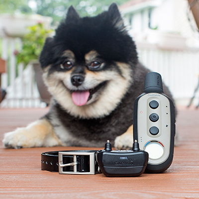GARMIN<sup>&reg;</sup> Delta<sup>&reg;</sup> XC Remote Dog Training System - This remote training device offers three different training options in just one collar to best suit your dog and training goals.  Featuring adjustable settings for continuous or momentary stimulation, vibration or tone with an easy-to-read LCD handheld display.  Rugged and durable this trainer is effective up to 1/2 mile.  Includes black 3/4